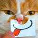 Аватар пользователя crubik
