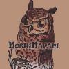 Аватар пользователя noskiNafani