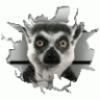 Аватар пользователя JDVU