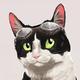 Аватар пользователя ZooVeR
