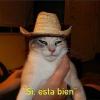 Аватар пользователя Binishe
