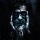 Аватар пользователя Error403