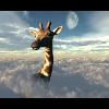 Аватар пользователя Narkomann