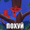 Аватар пользователя Volhohube