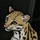 Аватар пользователя Nebulakot