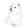 Аватар пользователя Kraiz