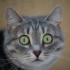 Аватар пользователя misha27856
