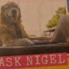 Аватар пользователя AskNigel