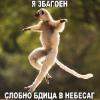 Аватар пользователя m0rbus