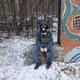 Аватар пользователя UksusStasyan