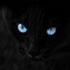 Аватар пользователя Alek0804