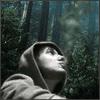 Аватар пользователя Utavegu