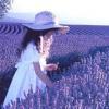 Аватар пользователя LavenderField