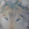 Аватар пользователя Werewolffe