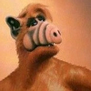 Аватар пользователя EtishkinaJizn