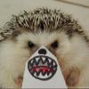 Аватар пользователя zloi.egik