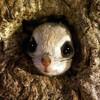 Аватар пользователя Danila1488