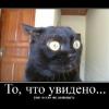 Аватар пользователя Evgenii911
