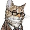 Аватар пользователя DOKTOP.KOT