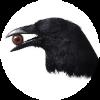 Аватар пользователя LabirynthAdv