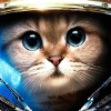 Аватар пользователя Crusnik02