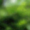 Аватар пользователя Andruxa66