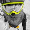 Аватар пользователя santeyatk