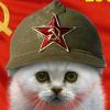 Аватар пользователя mkapustin