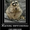 Аватар пользователя Skar14