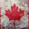Аватар пользователя new.canadian