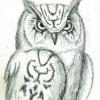 Аватар пользователя gipener011