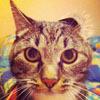 Аватар пользователя Mozera