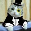 Аватар пользователя CatsRulez