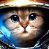 Аватар пользователя Kypca4