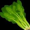 Аватар пользователя StreamerSpinach