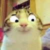 Аватар пользователя Skyfire51
