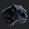 Аватар пользователя BlackyPantera