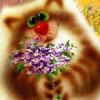 Аватар пользователя Apelsina2016