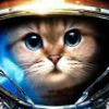 Аватар пользователя Gamer55