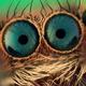 Аватар пользователя BitKit