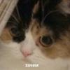 Аватар пользователя zer93