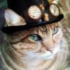 Аватар пользователя al888