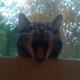 Аватар пользователя GrimSPB