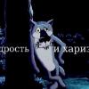 Аватар пользователя vol75
