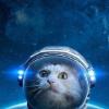 Аватар пользователя ShantanManta
