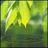 Аватар пользователя Vismut2005