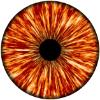 Аватар пользователя OkoYara