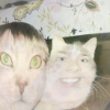 Аватар пользователя McFout