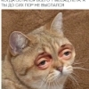 Аватар пользователя Dobriyponchikgrr