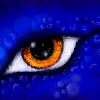 Аватар пользователя AzgardDe